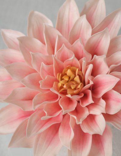 lyserød georgine blomst lavet af gumpaste