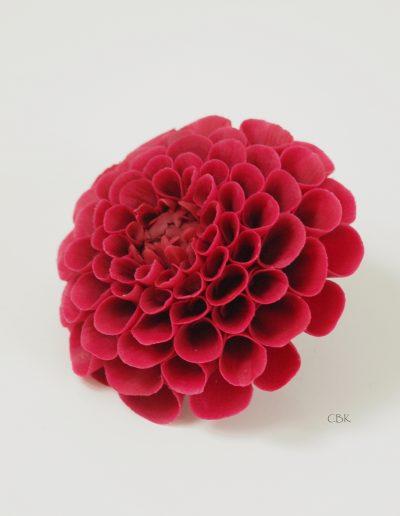 Pink pompom dahlia i gumpaste